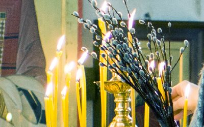 Сегодня    21. 04. 2019                в нашем храме состоялось праздничное богослужение в честь Входа Господня в Иерусалим.